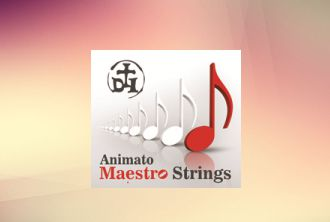 Maestro String Set for Violin